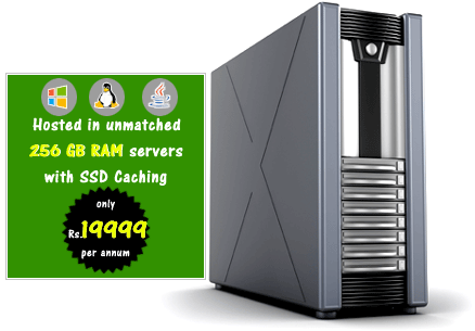 Linux Windows Java Reseller Web Hosting India