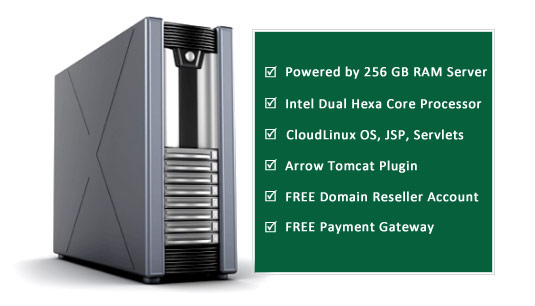 Reseller Web Hosting Java Features